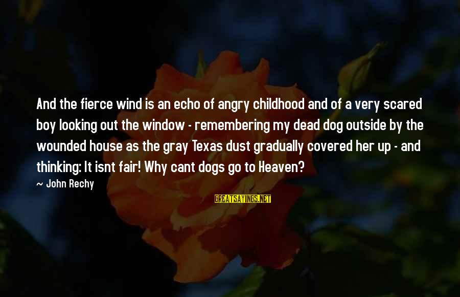 Dogs And Heaven Sayings By John Rechy: And the fierce wind is an echo of angry childhood and of a very scared