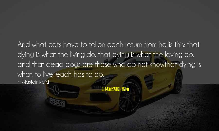 Dogs Love Sayings By Alastair Reid: And what cats have to tellon each return from hellis this: that dying is what