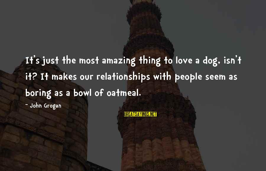 Dogs Love Sayings By John Grogan: It's just the most amazing thing to love a dog, isn't it? It makes our