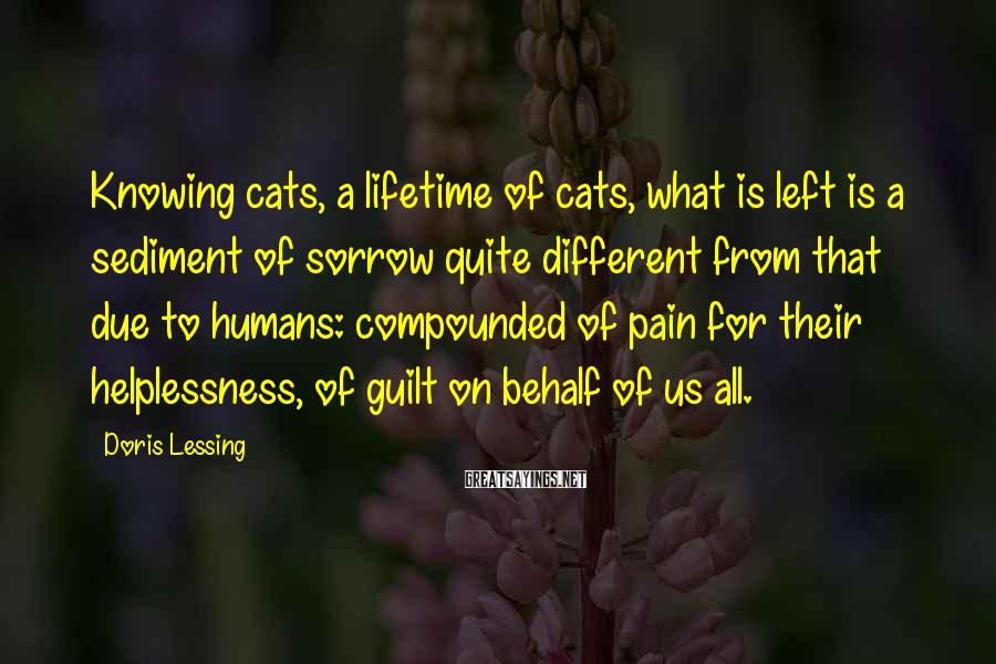 Doris Lessing Sayings: Knowing cats, a lifetime of cats, what is left is a sediment of sorrow quite