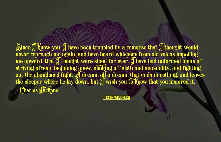 Down And Troubled Sayings By Charles Dickens: Since I knew you, I have been troubled by a remorse that I thought would