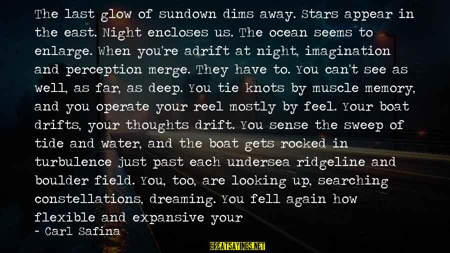 Dreaming Of You Again Sayings By Carl Safina: The last glow of sundown dims away. Stars appear in the east. Night encloses us.