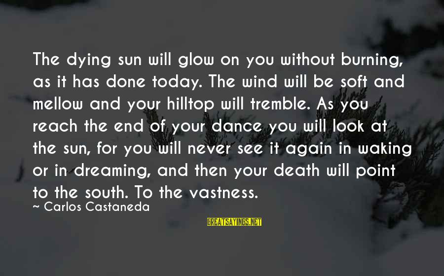 Dreaming Of You Again Sayings By Carlos Castaneda: The dying sun will glow on you without burning, as it has done today. The
