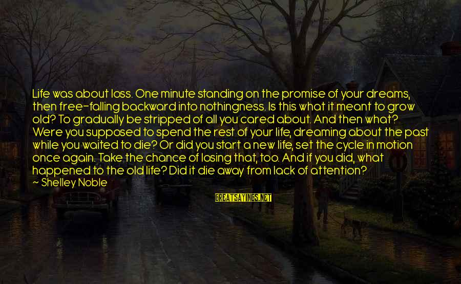 Dreaming Of You Again Sayings By Shelley Noble: Life was about loss. One minute standing on the promise of your dreams, then free-falling