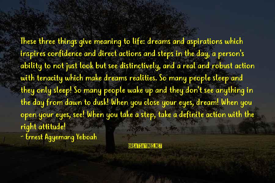 Dreams And Aspirations Sayings By Ernest Agyemang Yeboah: These three things give meaning to life: dreams and aspirations which inspires confidence and direct