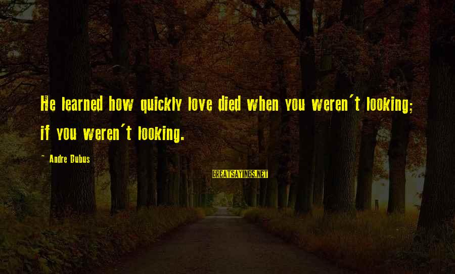 Dubus Sayings By Andre Dubus: He learned how quickly love died when you weren't looking; if you weren't looking.