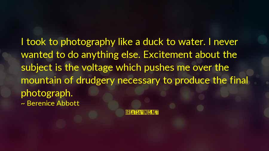 Duck In Water Sayings By Berenice Abbott: I took to photography like a duck to water. I never wanted to do anything