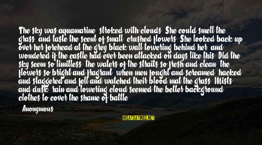 Dusk Sky Sayings By Anonymous: The sky was aquamarine, stroked with clouds. She could smell the grass, and taste the