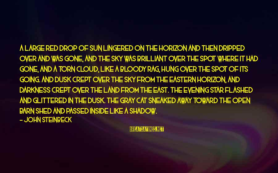 Dusk Sky Sayings By John Steinbeck: A large red drop of sun lingered on the horizon and then dripped over and