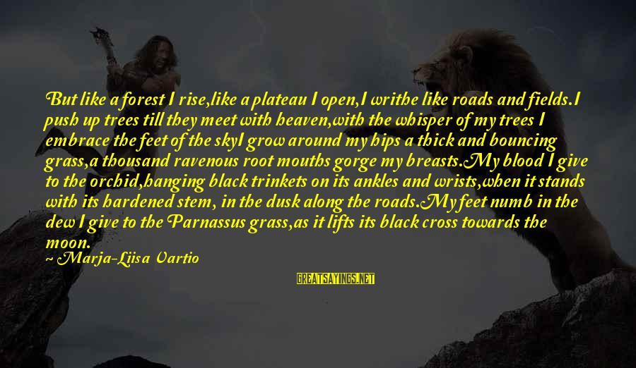 Dusk Sky Sayings By Marja-Liisa Vartio: But like a forest I rise,like a plateau I open,I writhe like roads and fields.I