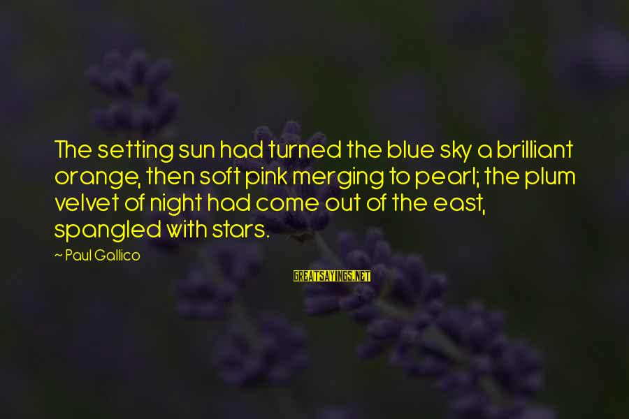 Dusk Sky Sayings By Paul Gallico: The setting sun had turned the blue sky a brilliant orange, then soft pink merging