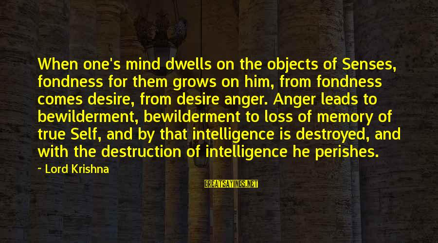 Dwells Sayings By Lord Krishna: When one's mind dwells on the objects of Senses, fondness for them grows on him,