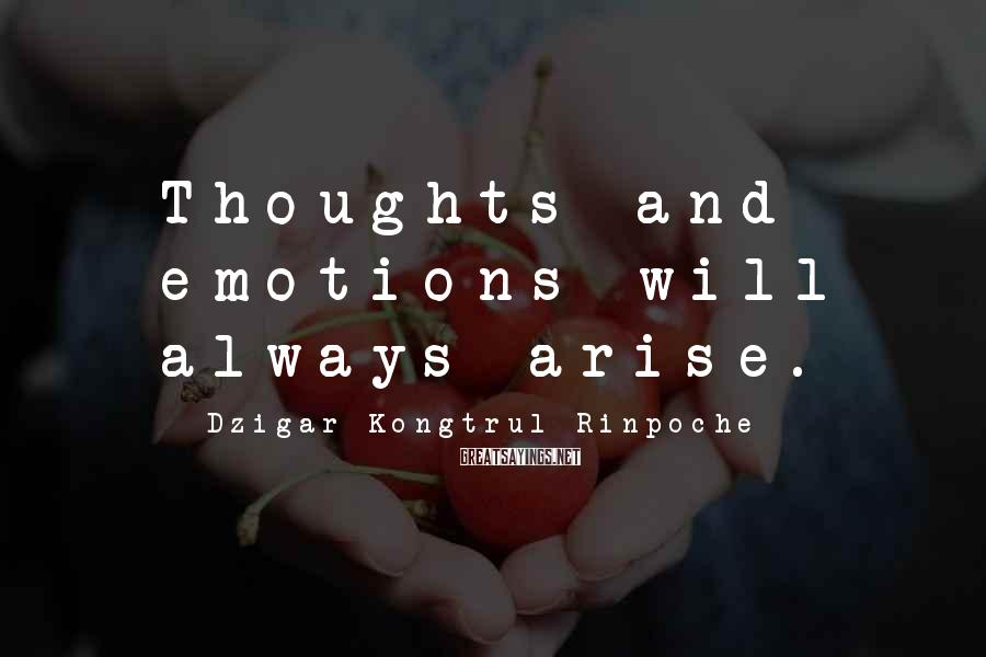 Dzigar Kongtrul Rinpoche Sayings: Thoughts and emotions will always arise.