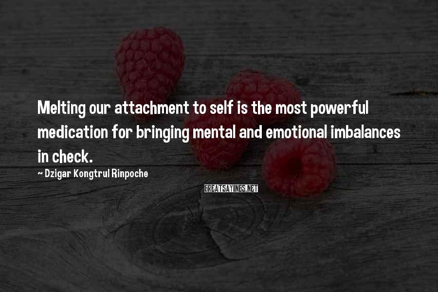 Dzigar Kongtrul Rinpoche Sayings: Melting our attachment to self is the most powerful medication for bringing mental and emotional