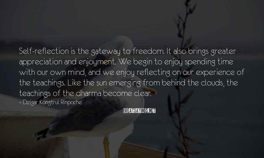 Dzigar Kongtrul Rinpoche Sayings: Self-reflection is the gateway to freedom. It also brings greater appreciation and enjoyment. We begin