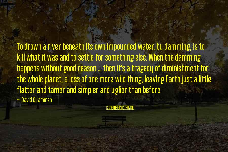 Earth's Water Sayings By David Quammen: To drown a river beneath its own impounded water, by damming, is to kill what