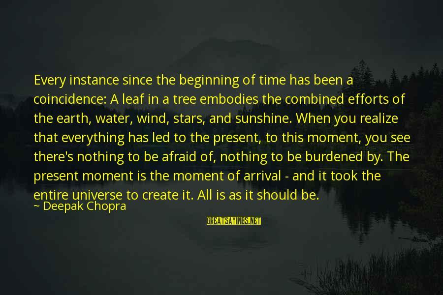 Earth's Water Sayings By Deepak Chopra: Every instance since the beginning of time has been a coincidence: A leaf in a