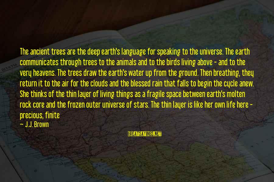 Earth's Water Sayings By J.J. Brown: The ancient trees are the deep earth's language for speaking to the universe. The earth