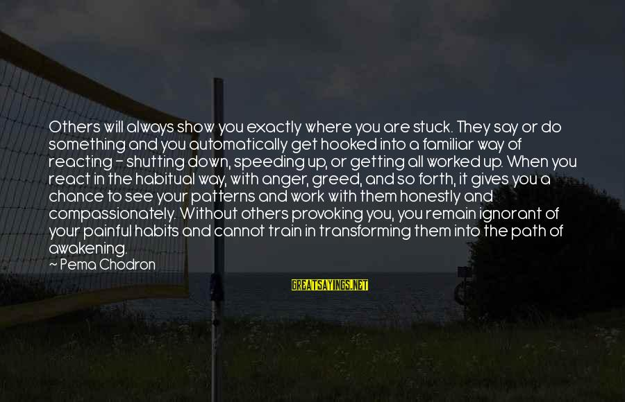 Easter Island Sayings By Pema Chodron: Others will always show you exactly where you are stuck. They say or do something
