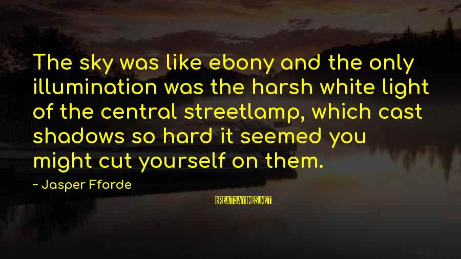 Ebony Sayings By Jasper Fforde: The sky was like ebony and the only illumination was the harsh white light of