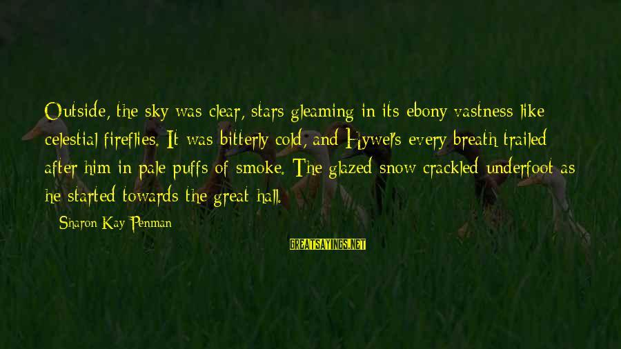 Ebony Sayings By Sharon Kay Penman: Outside, the sky was clear, stars gleaming in its ebony vastness like celestial fireflies. It