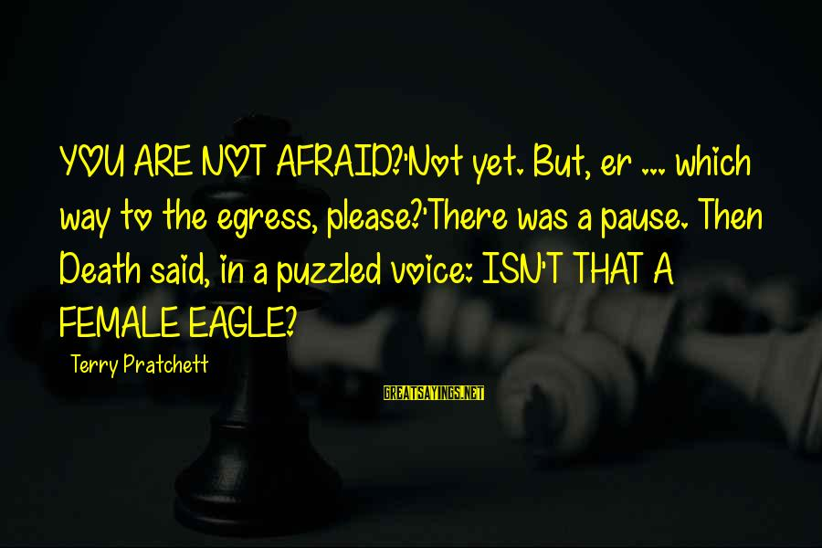 Egress Sayings By Terry Pratchett: YOU ARE NOT AFRAID?'Not yet. But, er ... which way to the egress, please?'There was
