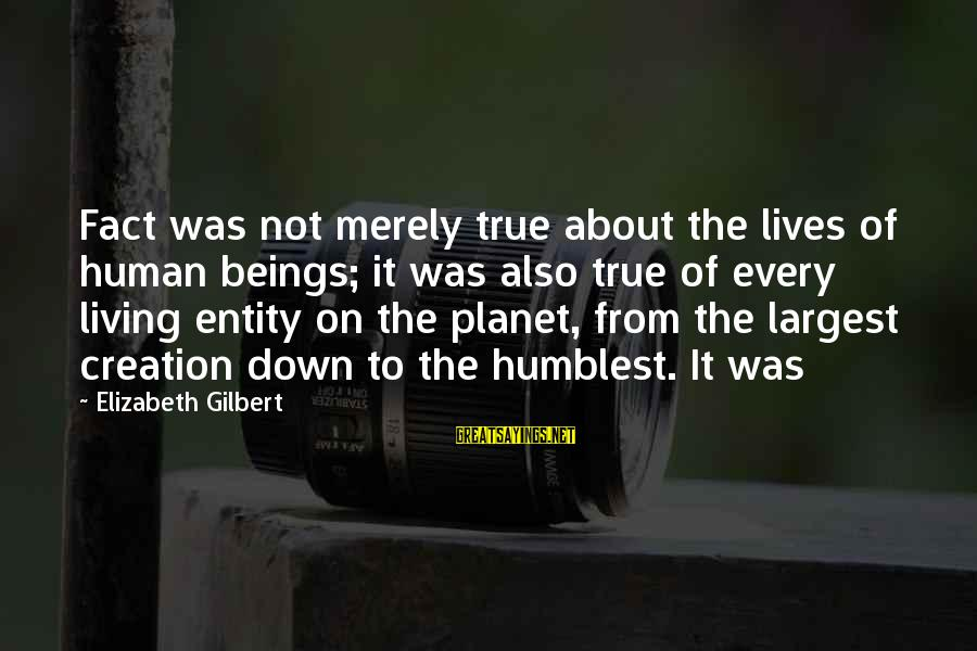 El Respeto Sayings By Elizabeth Gilbert: Fact was not merely true about the lives of human beings; it was also true