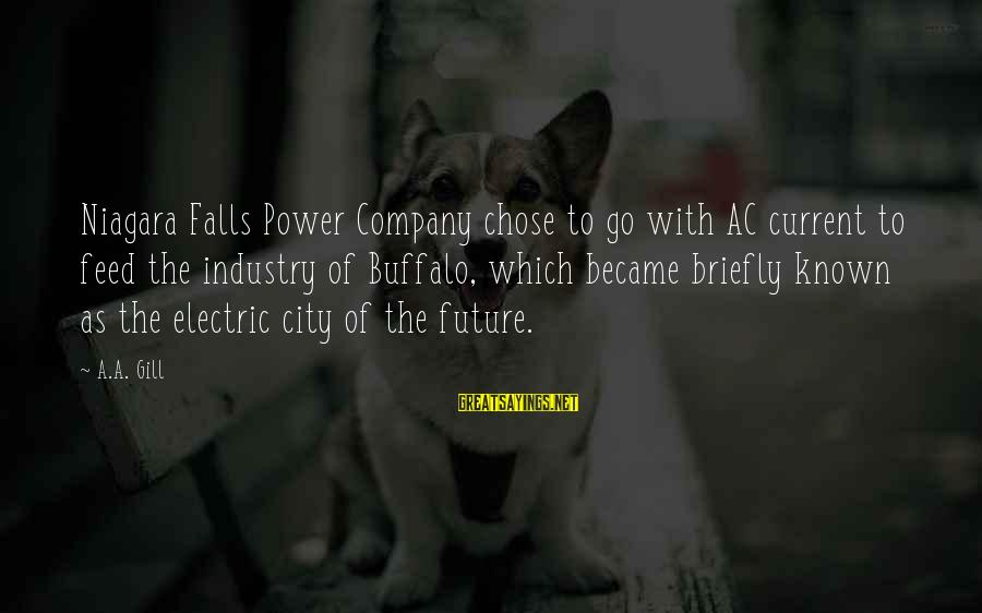 Electric Power Sayings By A.A. Gill: Niagara Falls Power Company chose to go with AC current to feed the industry of