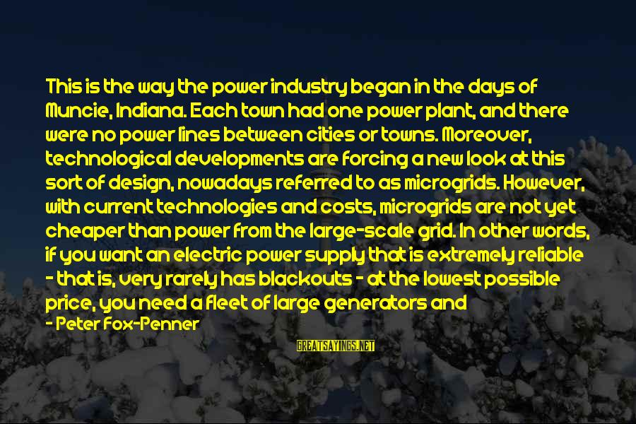 Electric Power Sayings By Peter Fox-Penner: This is the way the power industry began in the days of Muncie, Indiana. Each