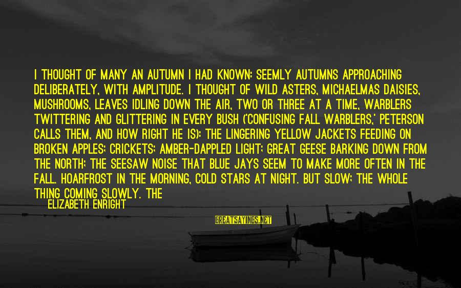 Elizabeth Enright Sayings By Elizabeth Enright: I thought of many an autumn I had known: Seemly autumns approaching deliberately, with amplitude.