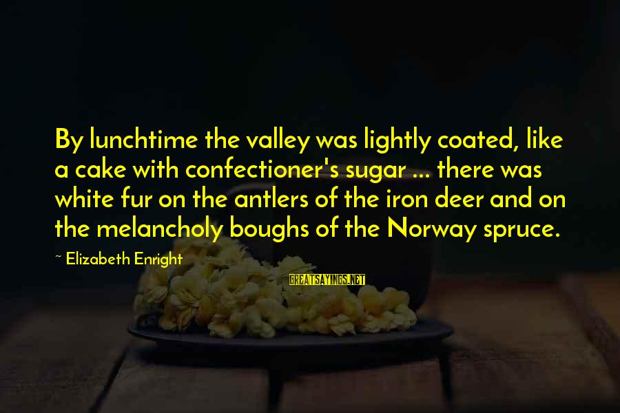Elizabeth Enright Sayings By Elizabeth Enright: By lunchtime the valley was lightly coated, like a cake with confectioner's sugar ... there