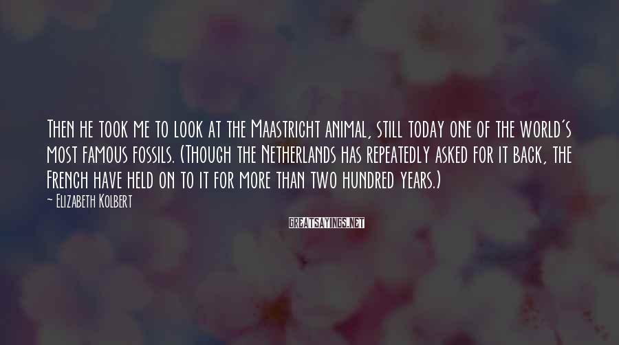 Elizabeth Kolbert Sayings: Then he took me to look at the Maastricht animal, still today one of the