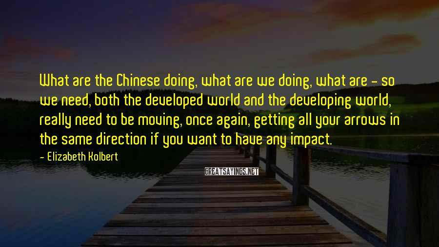 Elizabeth Kolbert Sayings: What are the Chinese doing, what are we doing, what are - so we need,