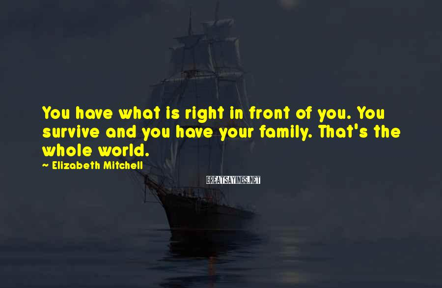 Elizabeth Mitchell Sayings: You have what is right in front of you. You survive and you have your