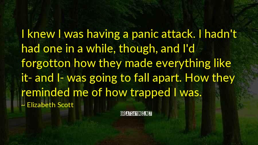 Elizabeth Scott Sayings: I knew I was having a panic attack. I hadn't had one in a while,