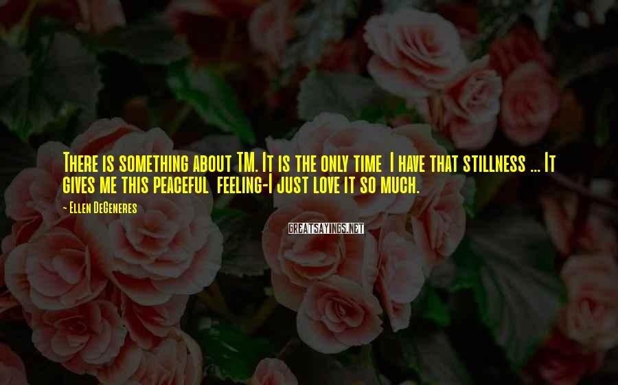 Ellen DeGeneres Sayings: There is something about TM. It is the only time I have that stillness ...