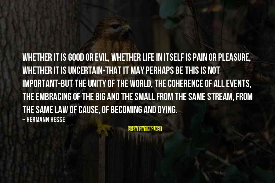 Embracing The World Sayings By Hermann Hesse: Whether it is good or evil, whether life in itself is pain or pleasure, whether