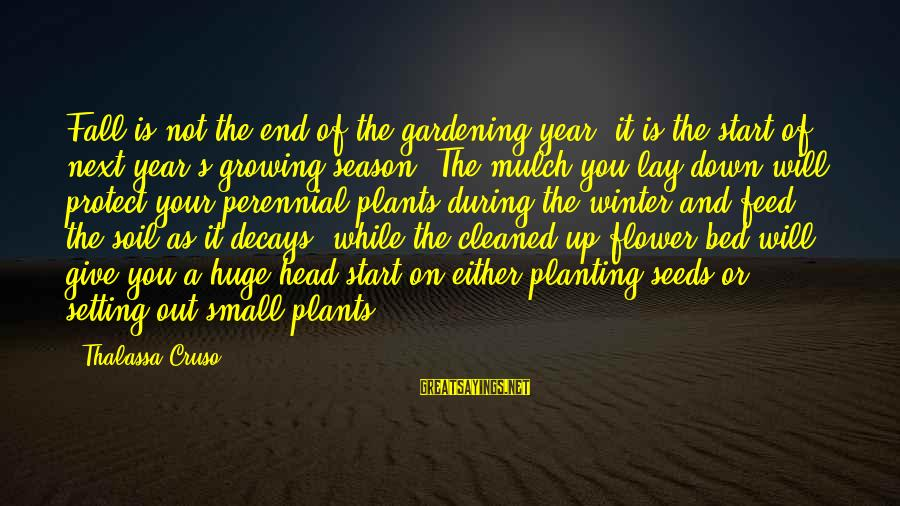 End Of Winter Season Sayings By Thalassa Cruso: Fall is not the end of the gardening year; it is the start of next