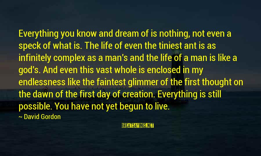 Endlessness Sayings By David Gordon: Everything you know and dream of is nothing, not even a speck of what is.