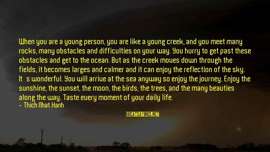 Enjoy Every Moment In Life Sayings By Thich Nhat Hanh: When you are a young person, you are like a young creek, and you meet