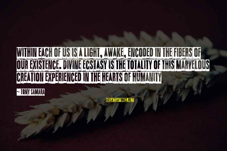 Enlightenment Advaita Sayings By Tony Samara: Within each of us is a light, awake, encoded in the fibers of our existence.