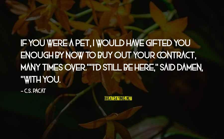 Enough Said Sayings By C.S. Pacat: If you were a pet, I would have gifted you enough by now to buy