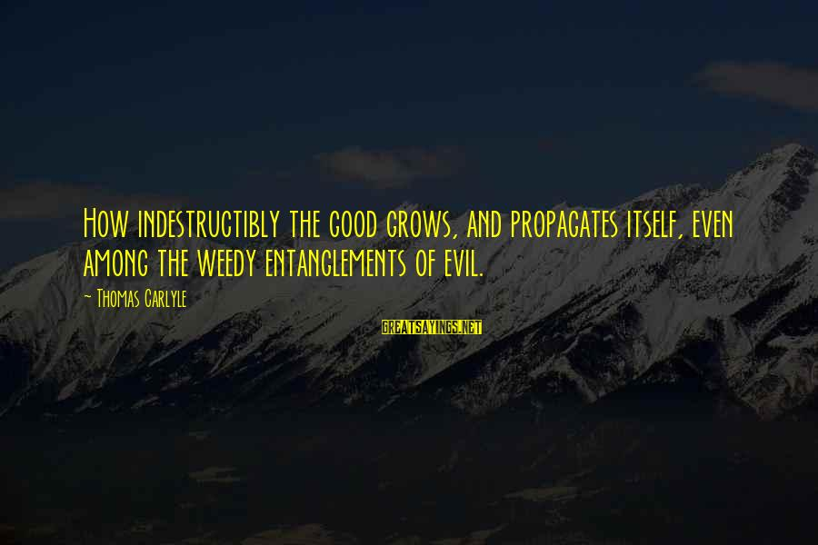 Entanglements Sayings By Thomas Carlyle: How indestructibly the good grows, and propagates itself, even among the weedy entanglements of evil.