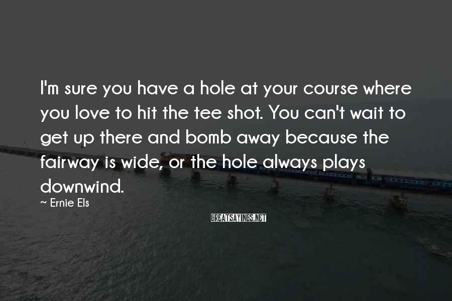 Ernie Els Sayings: I'm sure you have a hole at your course where you love to hit the