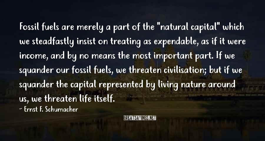 """Ernst F. Schumacher Sayings: Fossil fuels are merely a part of the """"natural capital"""" which we steadfastly insist on"""