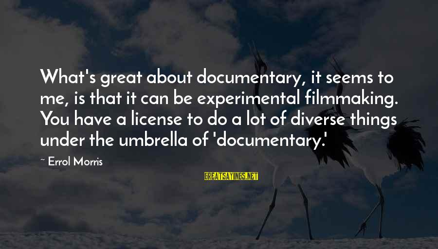 Errol's Sayings By Errol Morris: What's great about documentary, it seems to me, is that it can be experimental filmmaking.