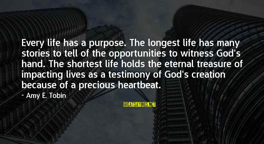 Eternal Life Quotes Sayings By Amy E. Tobin: Every life has a purpose. The longest life has many stories to tell of the