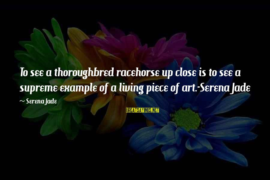 Exchange Rates Sayings By Serena Jade: To see a thoroughbred racehorse up close is to see a supreme example of a