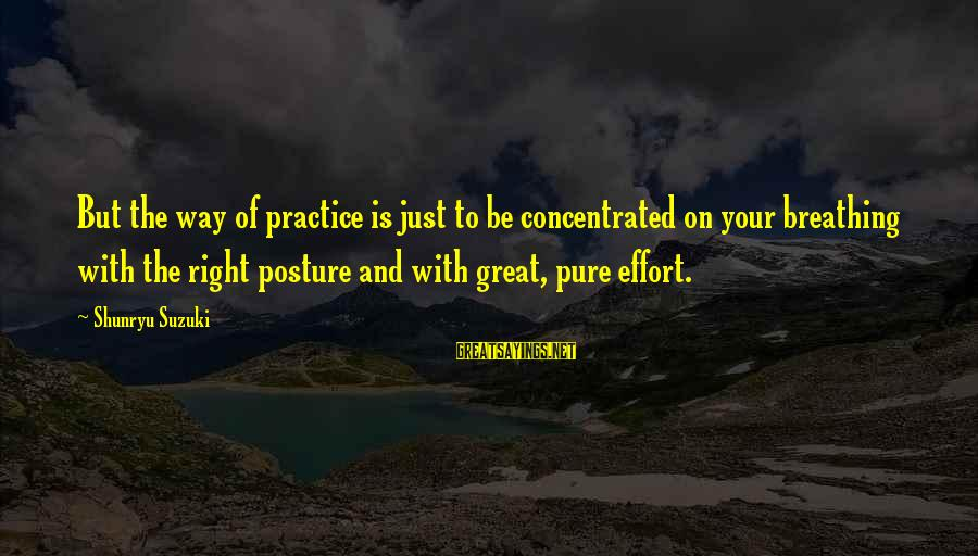 Expensive Smile Sayings By Shunryu Suzuki: But the way of practice is just to be concentrated on your breathing with the