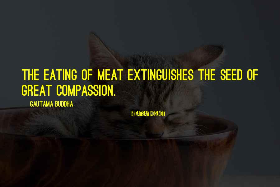 Extinguishes Sayings By Gautama Buddha: The eating of meat extinguishes the seed of great compassion.
